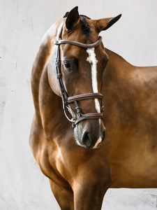 PS of Sweden Limited edition double noseband bridle