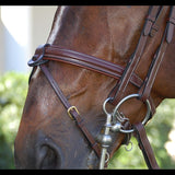 Dy'on Flash Noseband Double Bridle