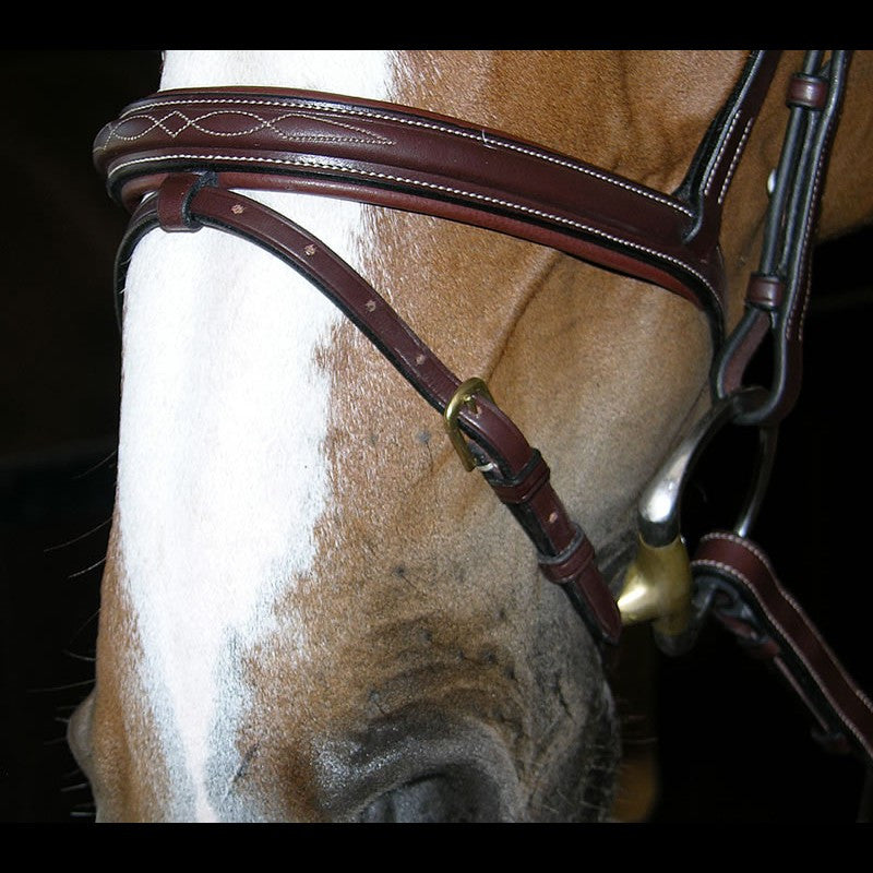 Dy'on Flash Bridle