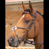 Dy'on Mexican Bridle