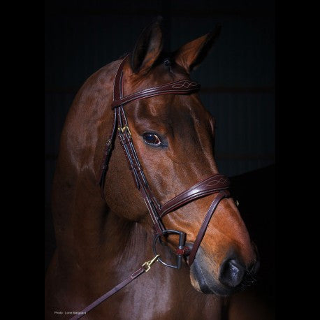 Anatomic Flash Noseband Bridle