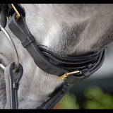 Dy'on Dressage Bridle