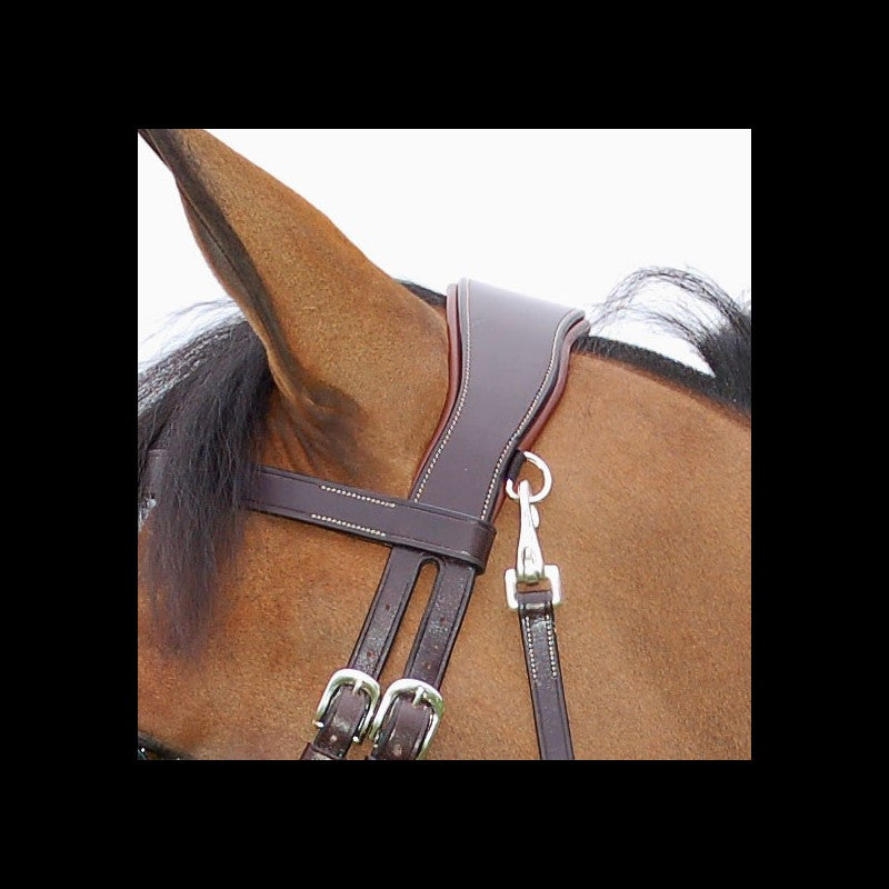 Work bridle with clips