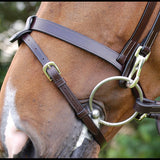 Work bridle with bit clips