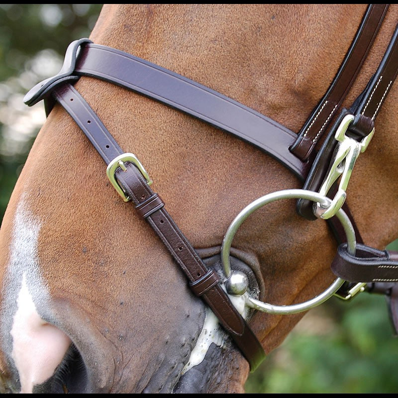 Dyon Bridle with removable flash