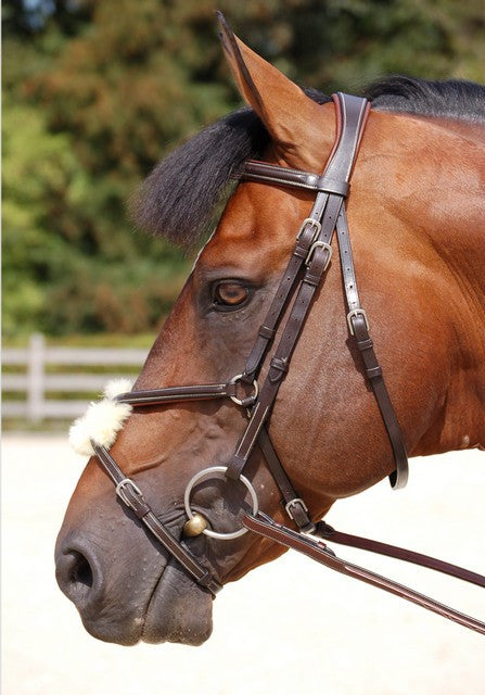 Anatomic Mexican Noseband Bridle