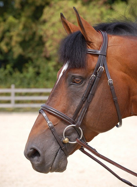 Classic Flash Noseband Bridle