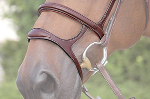 Dy'on Double Noseband
