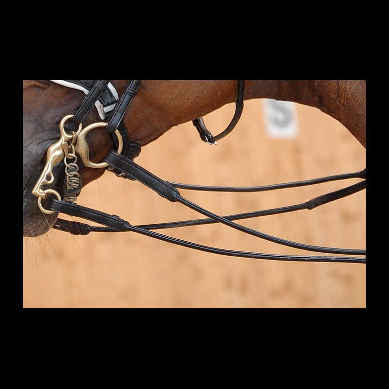 Dy'on Dressage Collection Reins