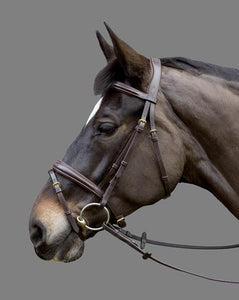 Show Jumping Bridle