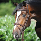 Fully Removable Flash Noseband Bridle