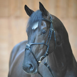 Bridle Pedro with Mexican Noseband