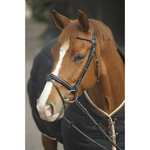 Penelope Point Sellier Bridle