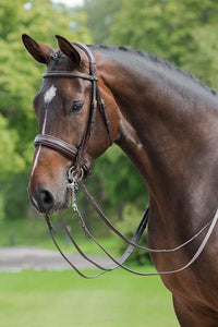 Rubicon Multi Bridle