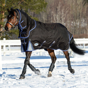 Winter Turnout rug with detachable neck