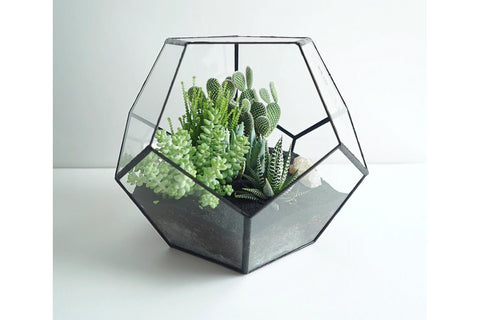 Pentagon Terrarium - The Chic Pad