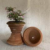 Terra Cotta - Double Rolled Rim Pot