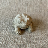 Miniature Frog