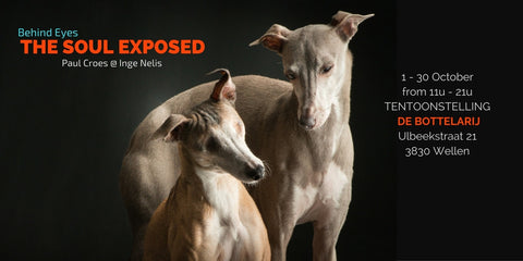 Behind Eyes - The Soul Exposed - Exhibition