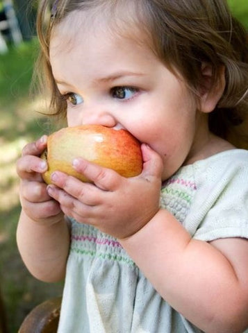 5 Time-saving Healthy Food Hacks for On-the-Go Kids