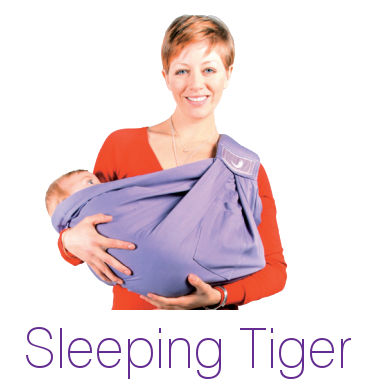 Sleeping Tiger Image