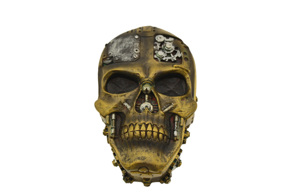Flat Steampunk Skull Dice Container For Rpgs