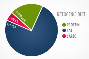 Switching From A Bodybuilding To Ketogenic Diet