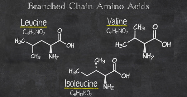 branched-chain-amino-acid