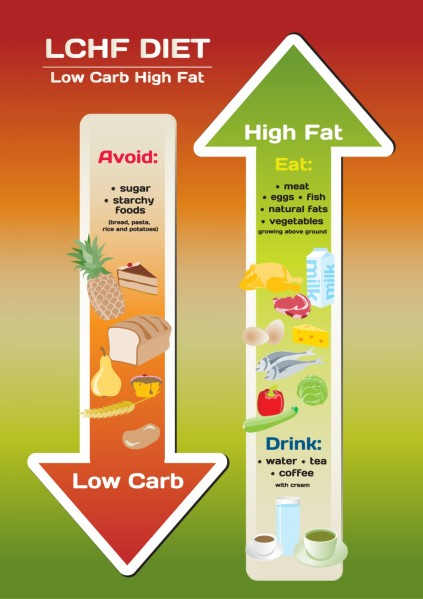 is low carb high fat diet good