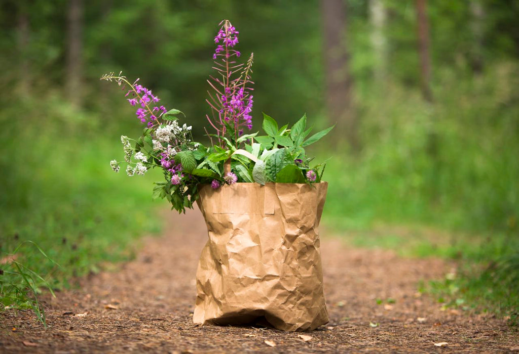 paper bag filled with wild herbs