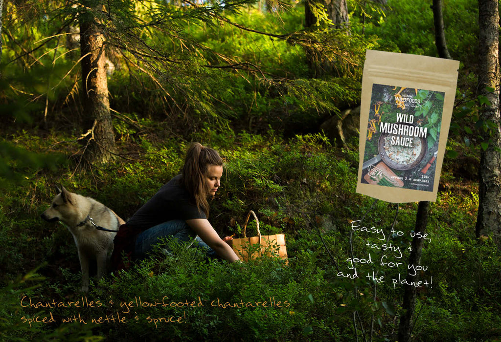 picture of Anna Nyman mushroom hunting with her dog Noki in nordic nature