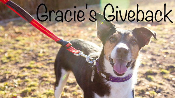 Gracie's Giveback Recipient – Unleashed Pet Rescue and Adoption