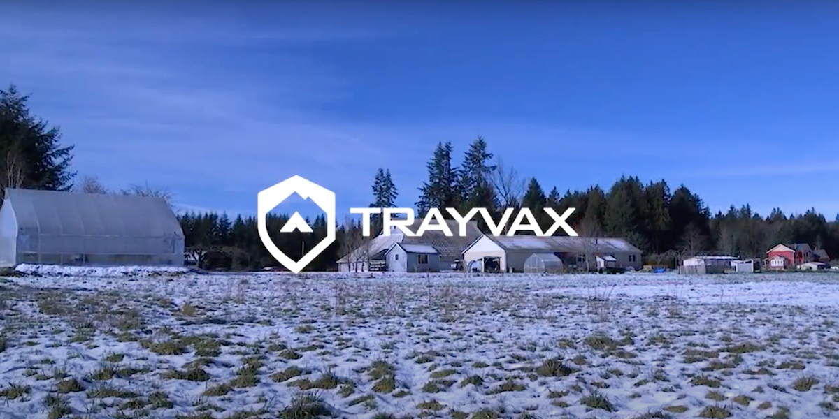 trayvax-growing-veterans-trading-rifles-for-shovels-cover