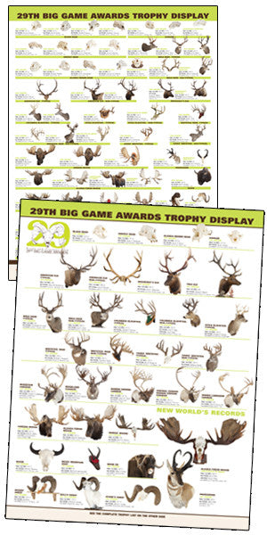 29th Big Game Awards Display Poster