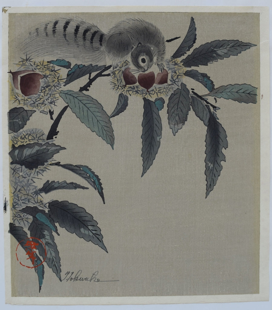A squirrel and Chestnuts - SAKURA FINE ART