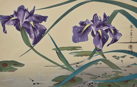 Irises and Tadpoles - SAKURA FINE ART