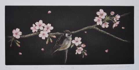 Sakura ni asobu (Sparrow and Cherry Blossoms) - SAKURA FINE ART