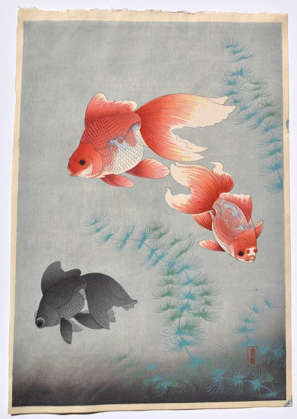 Kingyo (Goldfish) - SAKURA FINE ART