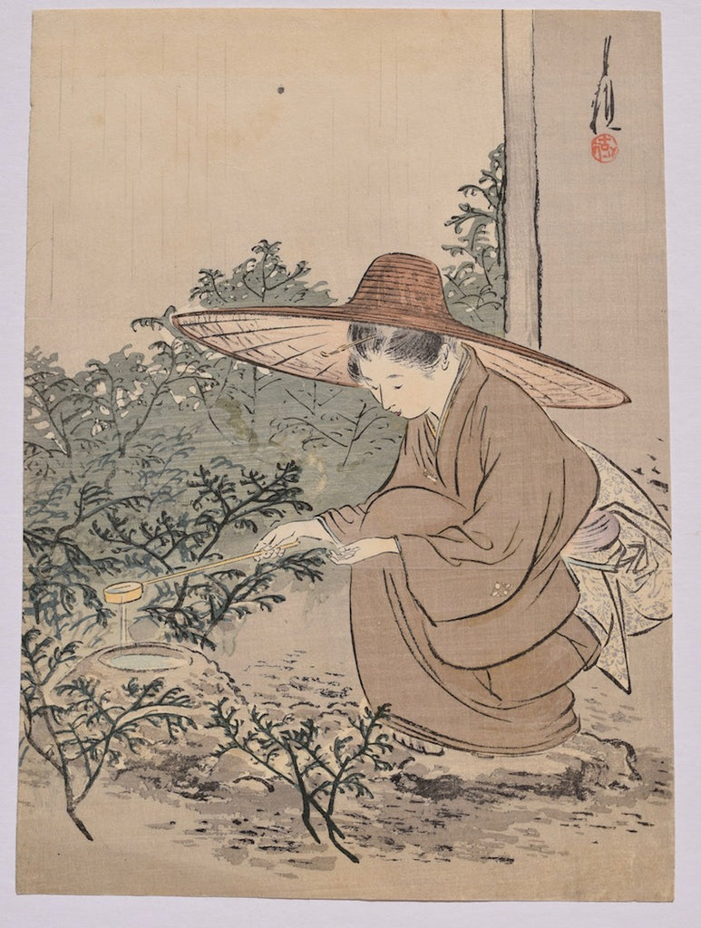 Robiraki (Opening the tea house)