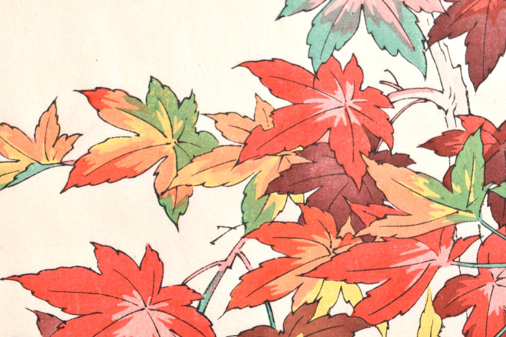 Koyo (Colored Leaves)