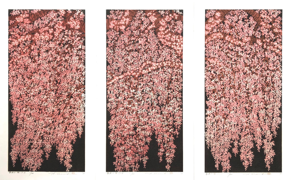 Weeping Cherry 17A, 17B, and 17C