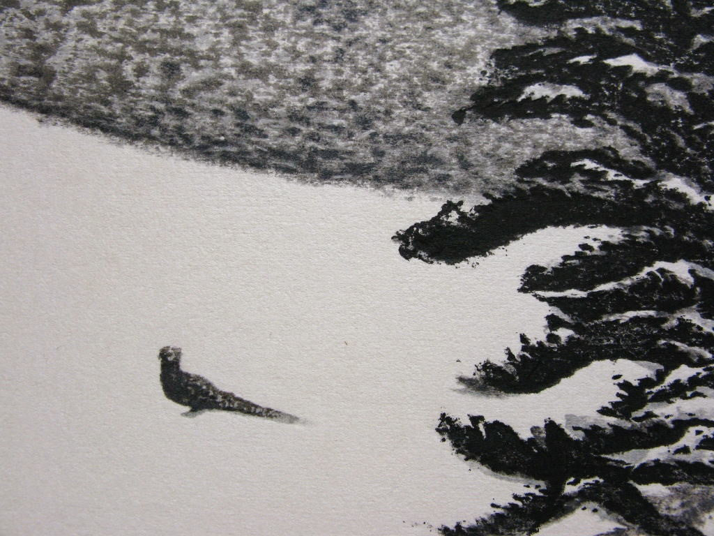 A bird on Snow