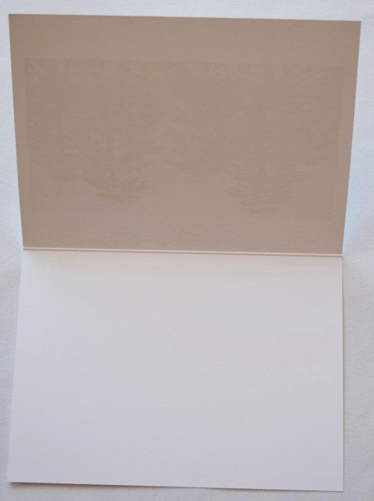 All-Occasion Greeting Card Assortment, Box Set of 8 Cards and Envelopes