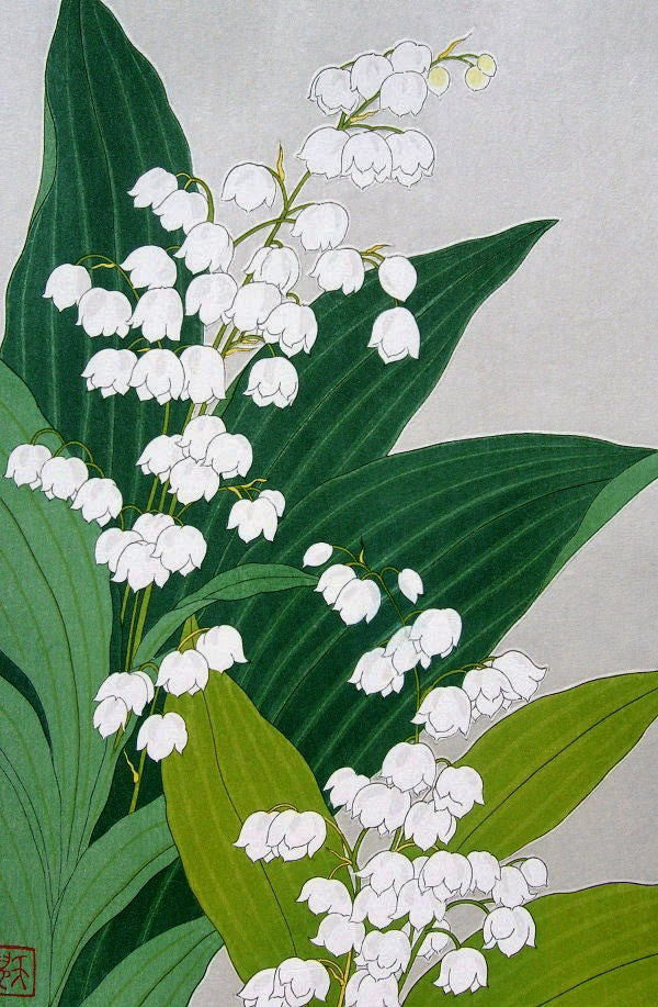 Suzuran  (Lily of the Valley)