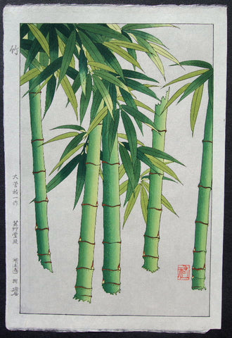 Take  ( Bamboo ) - SAKURA FINE ART