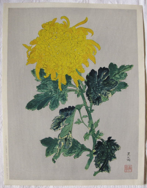 Ougiku (Yellow Chrysanthemum) - SAKURA FINE ART