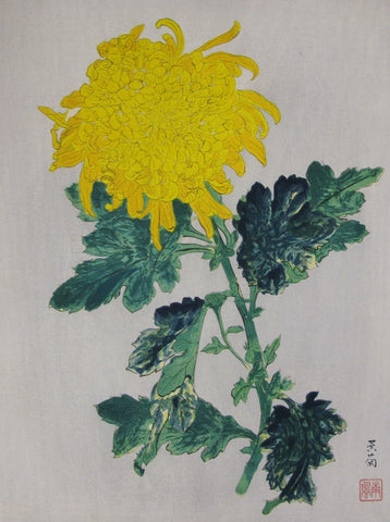Ougiku (Yellow Chrysanthemum)