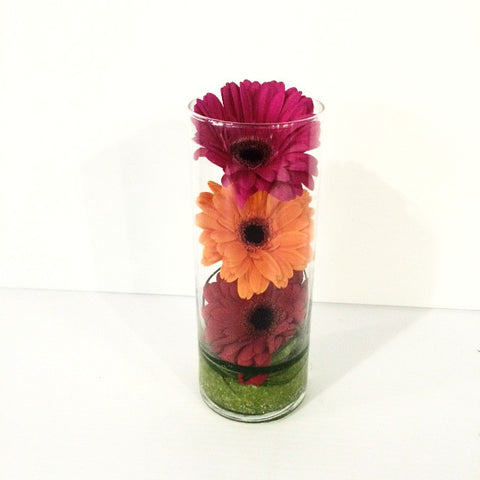 Eye catcher Gerbera