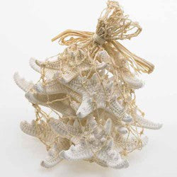 Knobby Starfish - White - Sold in pack of 12