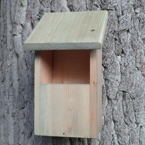 Robin / Pied Wagtails Nest Box
